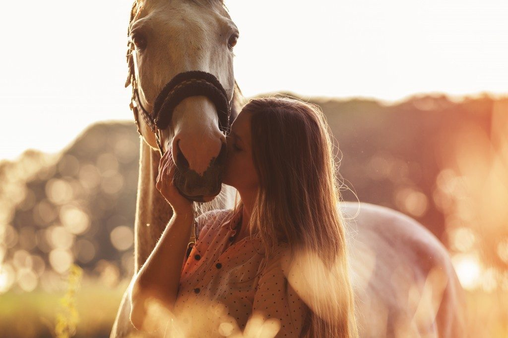 Woman kissing a horse with halters and hackamores